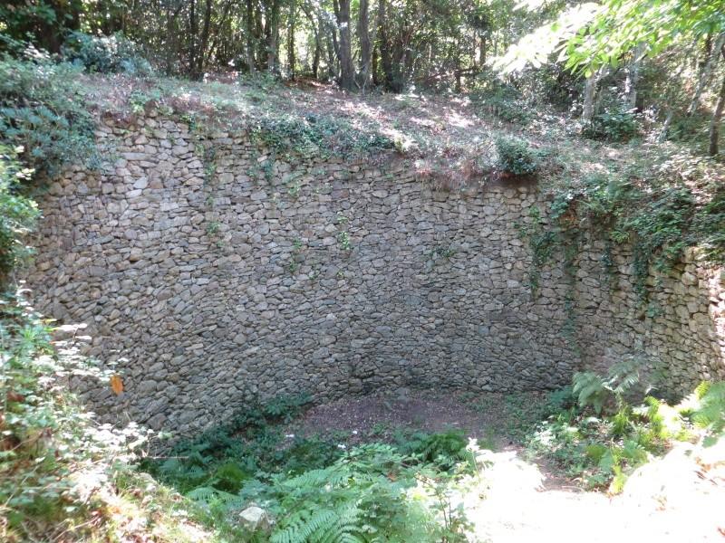 Le Pic d'Aureille de Laroque des Albères Img_0911