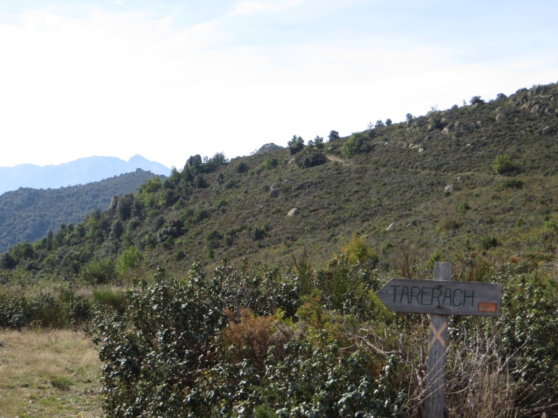 Le Roc del Gotier (Tarerach) Img_1516