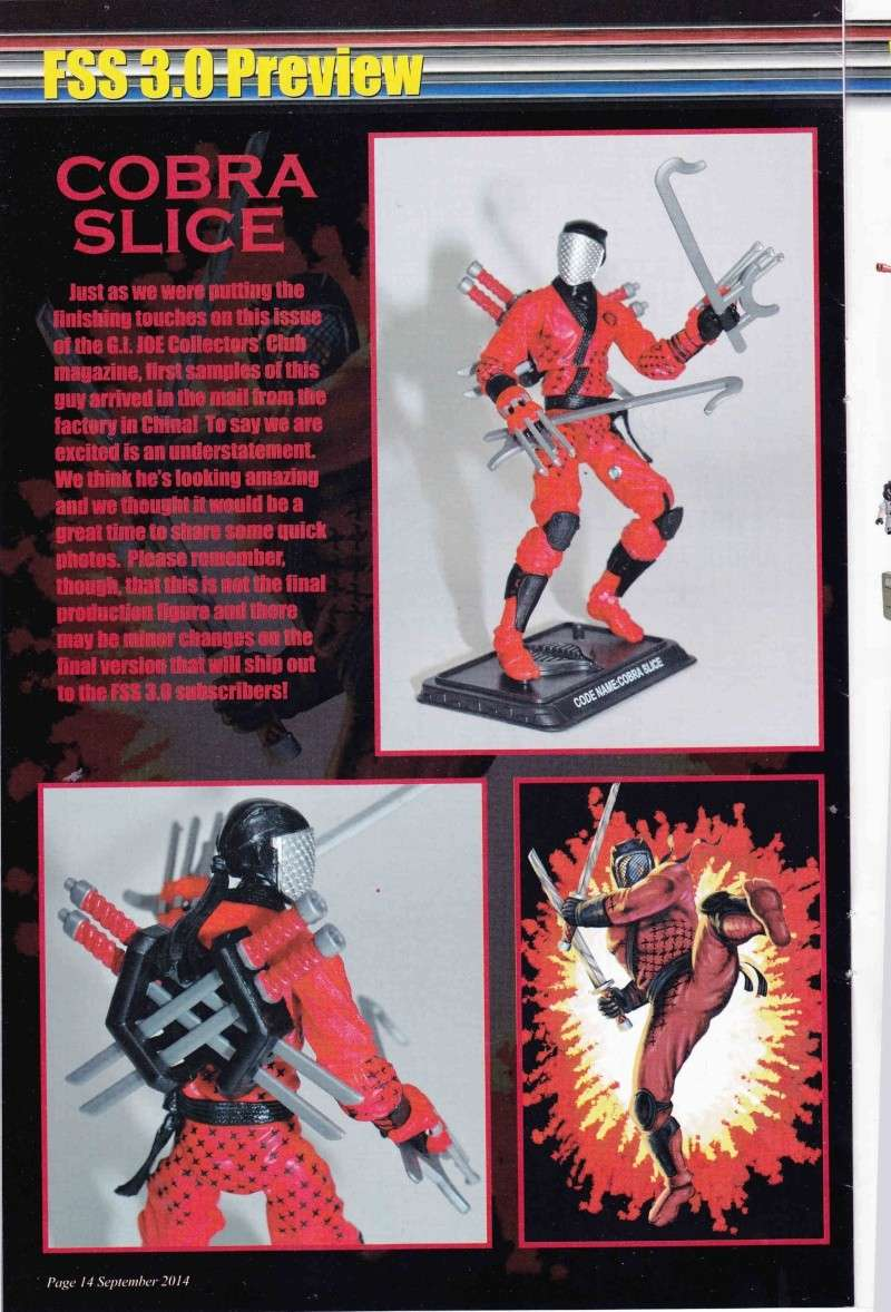 GI JOE Collectors Club - FSS 3.0 - Page 5 Img_0012