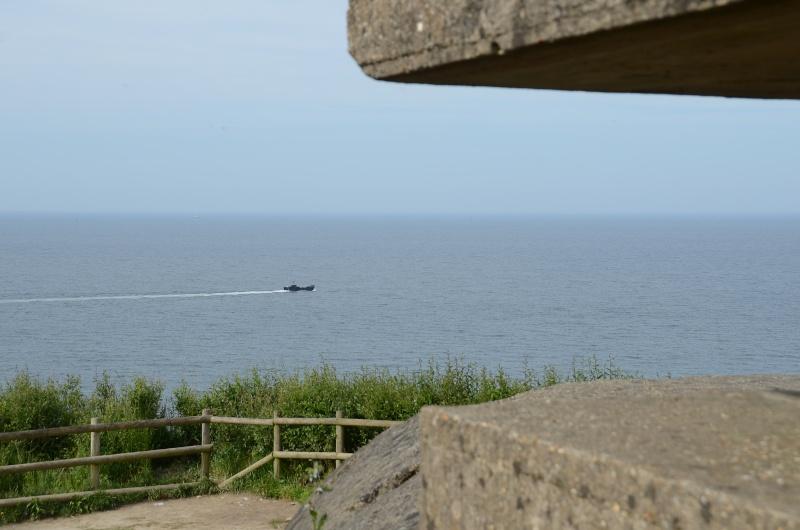 Bilan photo Normandie 2014  - Page 2 Longue10