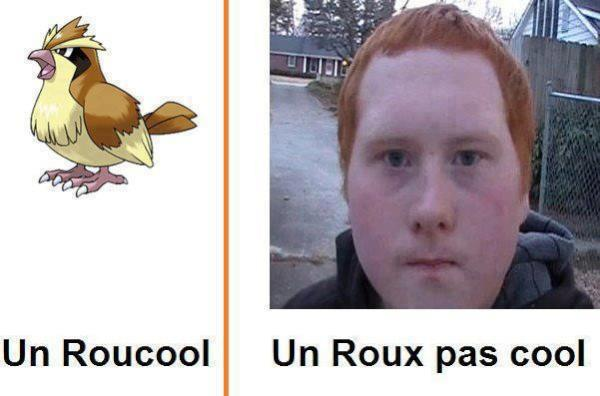 Post à flood; Roux_p10