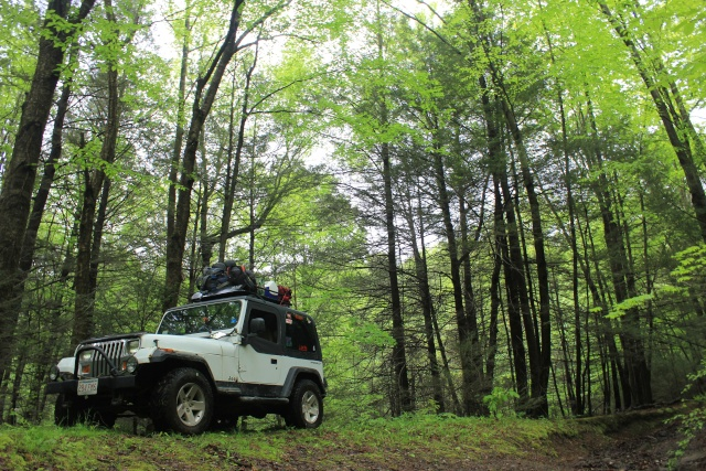 The Oreo (T.J.'s YJ) - Page 8 Img_1010
