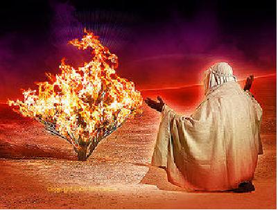 Le Tétragramme divin Buisso10