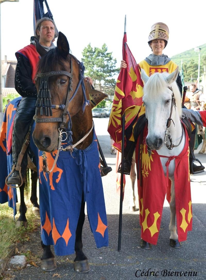 fête des chevaliers à Chatenois (67) Dsc_8711
