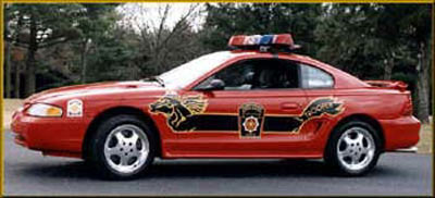 police cars Mustan10