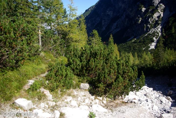 [FotoReport] Cima Spe (Dolomiti d'Oltre Piave) 0710