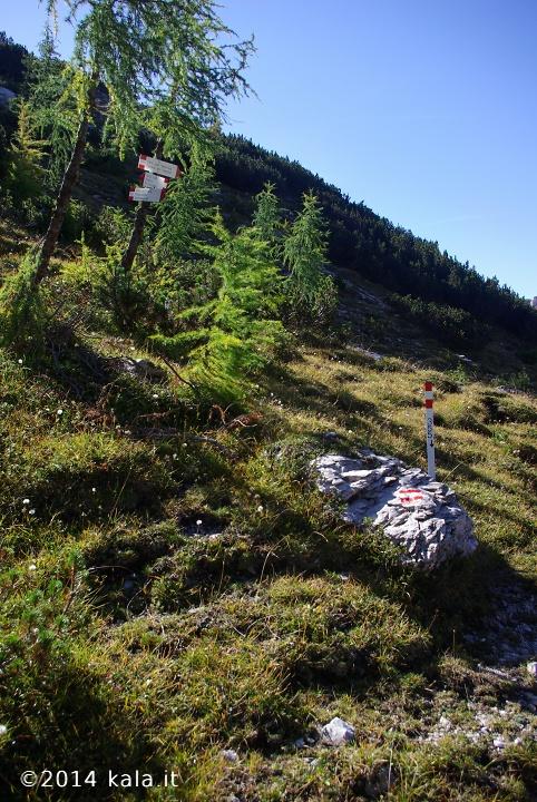 [FotoReport] Cima Spe (Dolomiti d'Oltre Piave) 1210