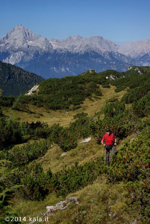 [FotoReport] Cima Spe (Dolomiti d'Oltre Piave) 1310