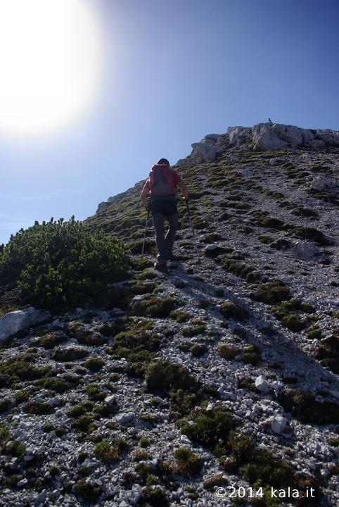 [FotoReport] Cima Spe (Dolomiti d'Oltre Piave) 2310