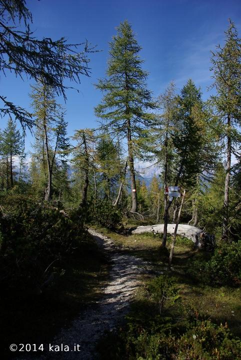 [FotoReport] Cima Spe (Dolomiti d'Oltre Piave) 2910