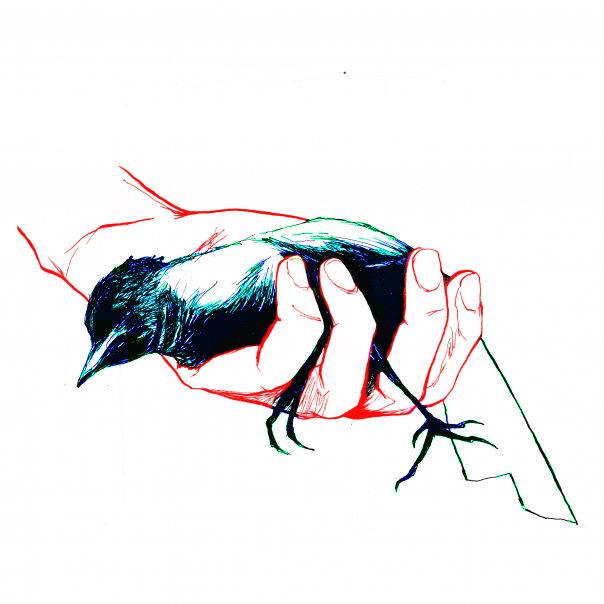 Ce que nos avatars disent de nous N°2 Oiseau11