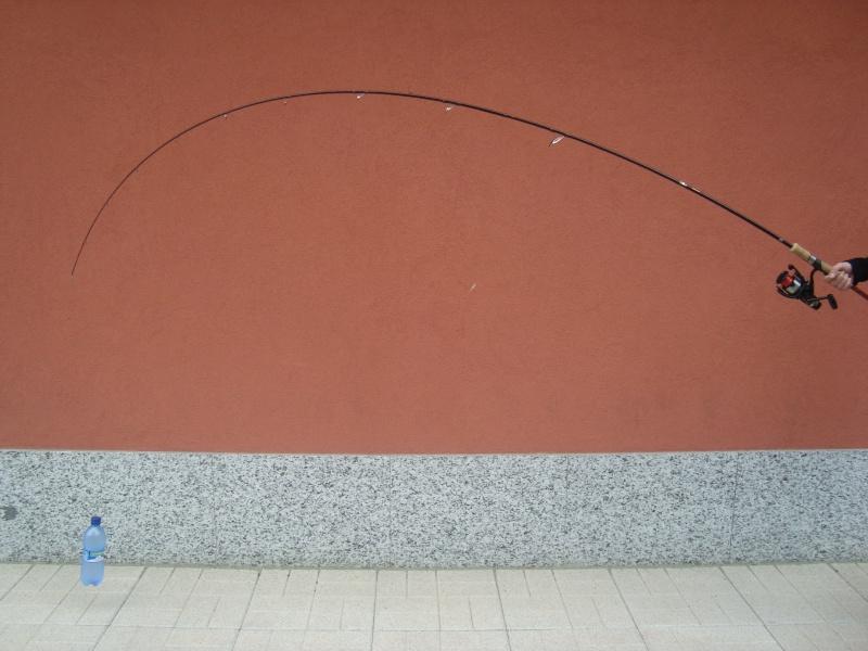 [SPIN] TROTISTA CLASSIC Foto_t21