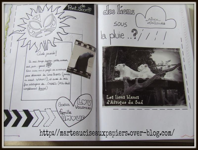 Galerie jeu de lété de @sako actualisée le 06/08 - Page 2 Dscf1134