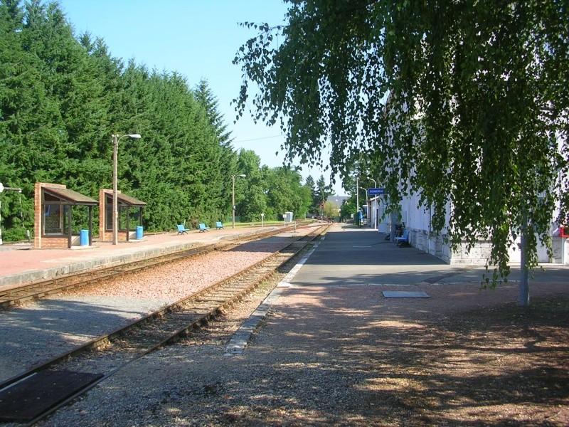Pk 207,2 : Gare de Romorantin-Lanthenay (41) Dscn0423