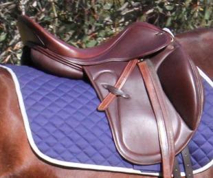 STOLEN - Ascot Vita Mono Dressage Saddle 14044110