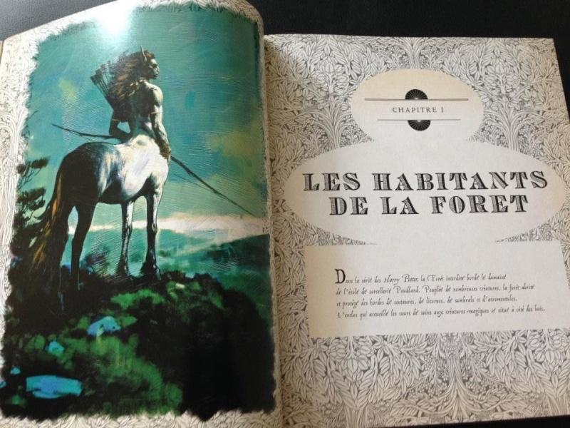 Harry Potter - Livres de collection et produits dérivés - Page 3 10156010