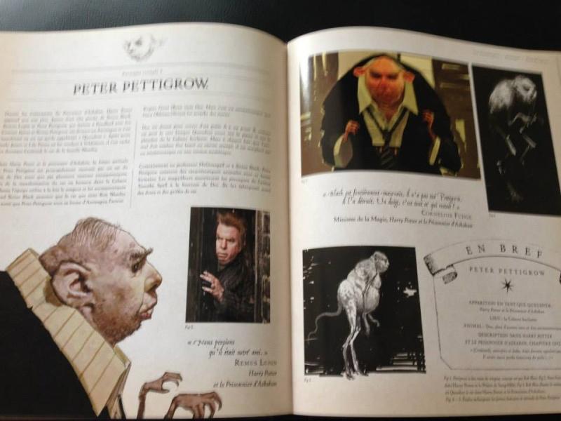 Harry Potter - Livres de collection et produits dérivés - Page 3 10486010