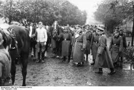 37.SS-Freiwilligen-Kavallerie-Division der SS « Lützow » 37210