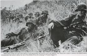 38.SS-Panzer-Grenadier-Division « Nibelungen » 38310