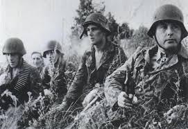28. SS-Freiwilligen-Grenadier-Division « Wallonien » Wa510