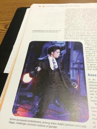 Adam Lambert News : 23rd October 2014 B0qjl410