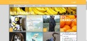 CreativeNewbies Discussion Thread - Page 2 Websit11