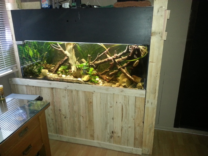 Meuble aquarium fabrication maison - Fabriquer meuble aquarium ...