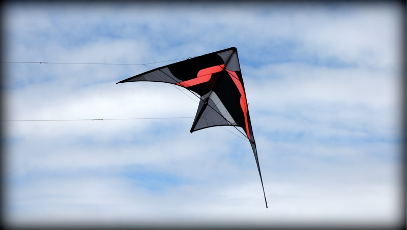 (VENDU) The grid Premiun Img_6110