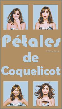 Pétales de Coquelicot