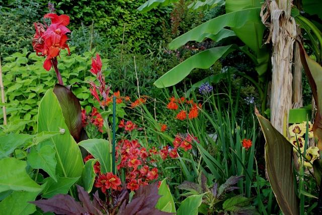 j'ai descendu dans mon jardin - Page 2 Juin_210