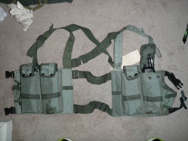 ANA or TB chest rig? P1010219