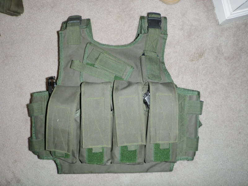ANA or TB chest rig? P1010220
