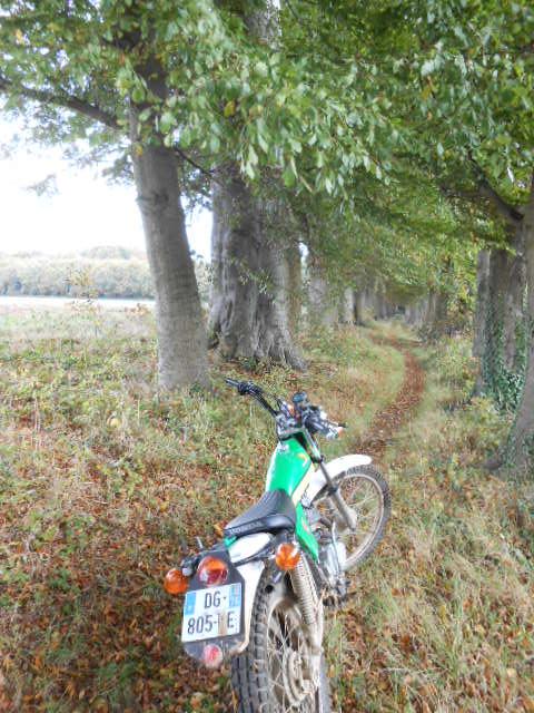 apres les bois ,la plaine Dscn0723