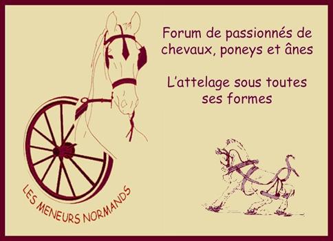 Forum d'Attelage, Les Meneurs Normands
