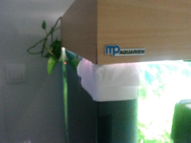 condensation qui coule le long des vitres et goute sur le bois 20140511