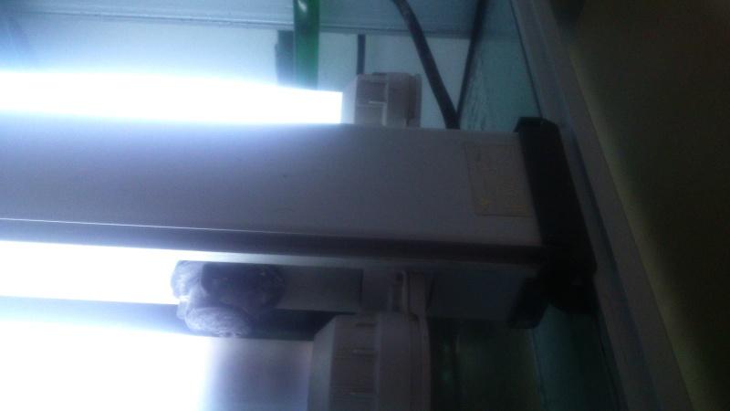 Eclairage bac cubique Dsc_0010