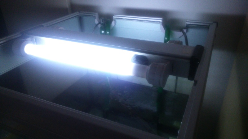 Eclairage bac cubique Dsc_0011