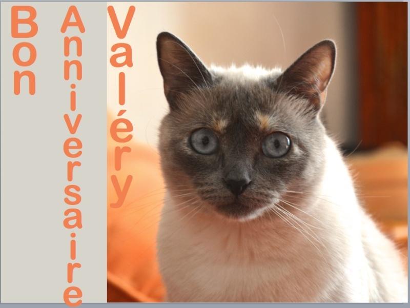 Joyeux anniversaire Valery53 Captur93