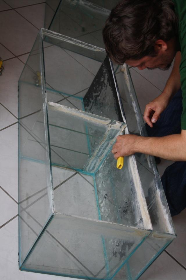 ma fishroom dans ma salle Img_9510