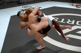 MMA : Mixed martial arts Images80