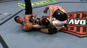 MMA : Mixed martial arts Images81