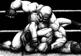 MMA : Mixed martial arts Images84