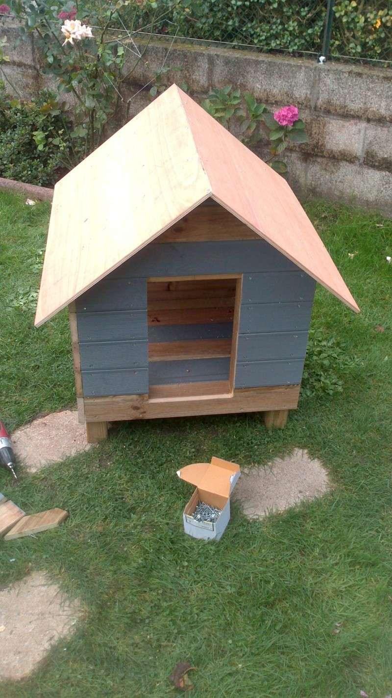 Fabrication cabane pour chat  Dsc_0624