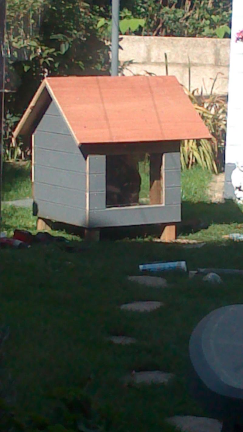 Fabrication cabane pour chat  Dsc_0625
