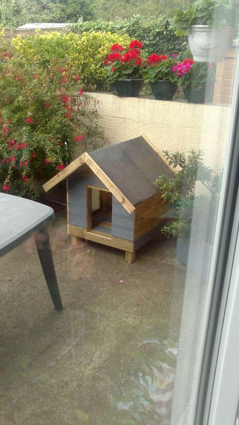 Fabrication cabane pour chat  Dsc_0626