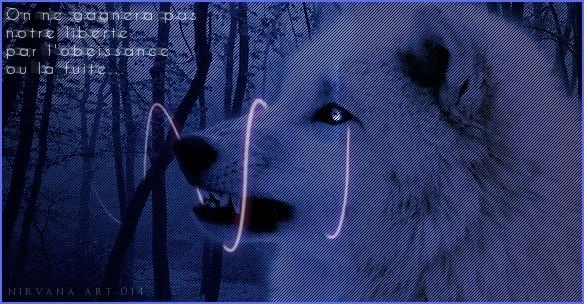 Agrou ♥ Loup_111