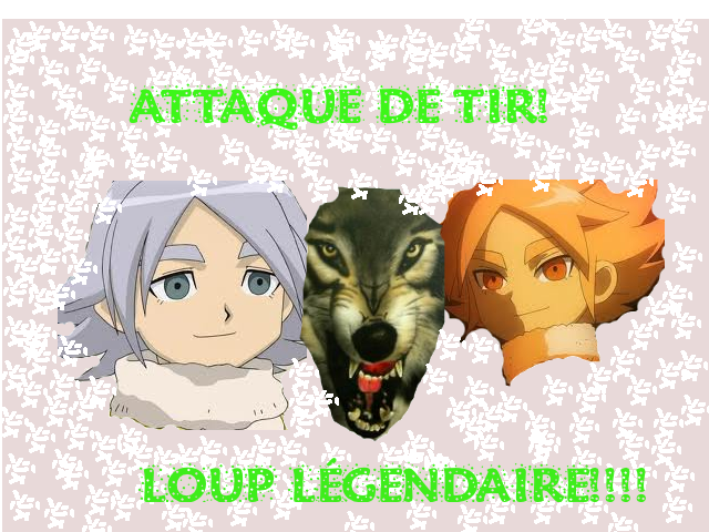 My galerie au pokemon à_à Loup_l10