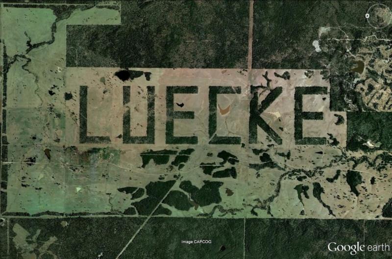 Un mot ecrit avec des arbres, Texas, Etats-Unis Luecke13