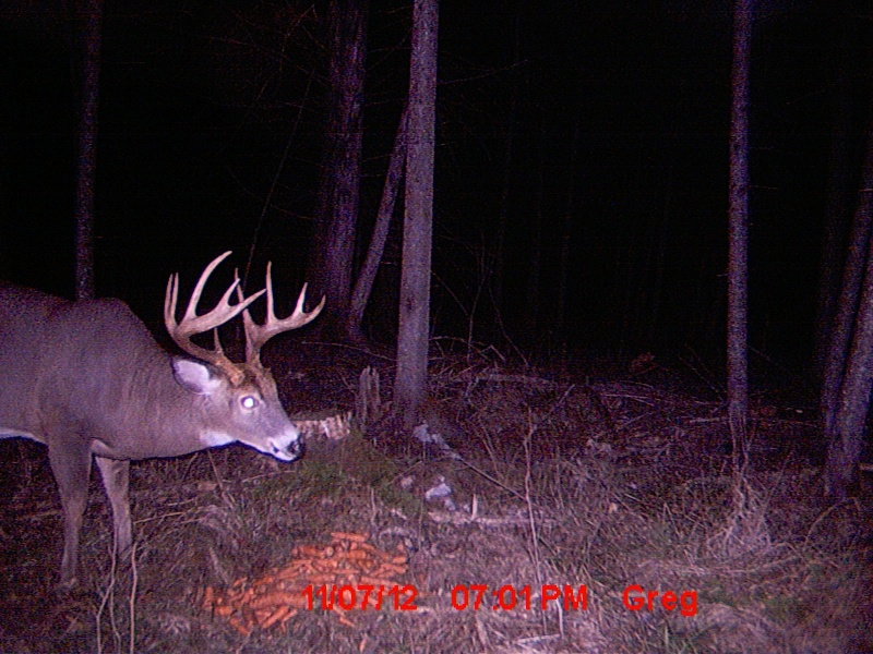 Votre défi de chasse pour 2013 Image27