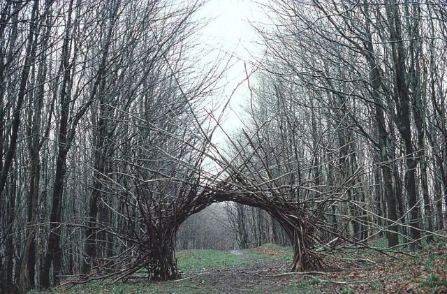 la Nature en base de travail, Andy Goldsworthy Andy_g10